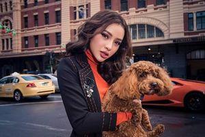Phương Trinh Jolie: Những người lắm tiền nhiều của có nhóm kín chuyên bàn chuyện săn gái showbiz