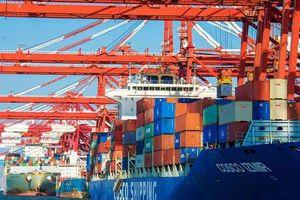 Giá dầu thô giảm do xuất khẩu của Trung Quốc giảm tháng thứ 4 liên tiếp