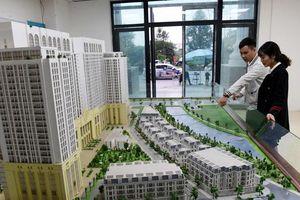 Chủ tịch HoREA Lê Hoàng Châu: Sàn chứng khoán là nơi huy động vốn lý tưởng