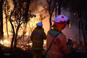 Australia khó kiểm soát các đám cháy rừng do thời tiết khô nóng