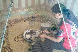 Xử lý nghiêm vi phạm môi trường của Công ty Chăn nuôi Hòa Phát Quảng Bình