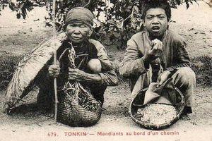 Nguồn cơn nạn đói kinh hoàng khiến gần 2 triệu người chết năm Ất Dậu