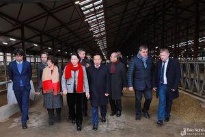Chủ tịch Quốc hội Nguyễn Thị Kim Ngân thăm Trang trại TH tại Nga