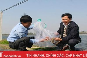'Trao cần câu', nông dân Lộc Hà tự tin khởi nghiệp