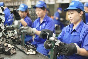 Better Work: Cải thiện điều kiện lao động song hành với thành công của doanh nghiệp