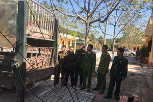 Lạng Sơn: Chặn đứng gần 2,5 tấn thịt lợn xuất lậu qua biên giới