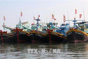 Đẩy nhanh lắp đặt thiết bị giám sát hành trình tàu cá