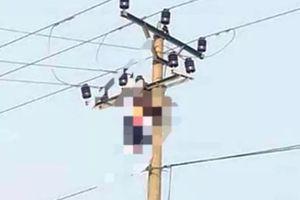 Tá hỏa nhìn người đàn ông mắc kẹt trên đường dây điện tử vong