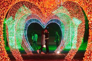 Đồng Nai 'chơi lớn' Noel này: Chuẩn bị tổ chức đêm hội ánh sáng siêu lung linh với hàng triệu bóng đèn Led tại Trảng Bom