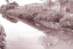 Nguồn ô nhiễm vây kín các sông cấp nước ngọt ở Hải Phòng