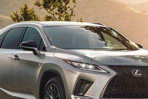 Lexus RX 2020 đẹp long lanh, như 'hổ mọc thêm cánh' với loạt tính năng an toàn