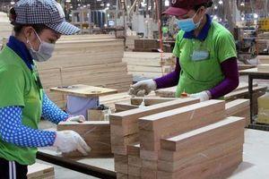 Bình Dương: Công nhân hưởng lợi từ thỏa ước lao động tập thể nhóm