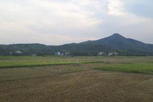 Phú Yên hỗ trợ các địa phương thiệt hại do nắng hạn
