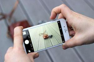 Mua thêm startup, Apple muốn biến iPhone thành vua chụp ảnh