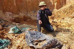 Hà Nội: Đã xác định được kẻ chủ mưu chôn trộm chất thải nguy hại tại huyện Sóc Sơn