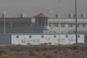 Tân Cương khẩn cấp tiêu hủy tài liệu mật về 'trại cải tạo' người Duy Ngô Nhĩ