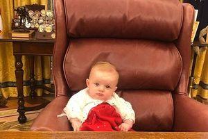 Cháu gái 4 tháng tuổi của ông Trump trông đáng yêu khi ngồi ghế tổng thống