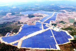 Thủy điện Miền Trung (EVNCHP): Năng lượng xanh – hướng đi bền vững để phát triển