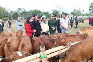 Viettel trao tặng bò giống cho hộ nghèo ở huyện Bá Thước,Thanh Hóa