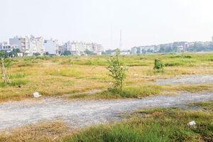 Mảng xanh dự án nhà ở ngày càng teo tóp