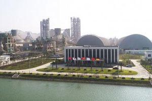 Xi măng Long Sơn: Duy trì chất lượng bền vững, mở rộng quy mô sản xuất