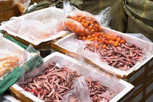 Chặn 2 container chứa gần 5 tấn thực phẩm thối đưa vào TP.HCM bán