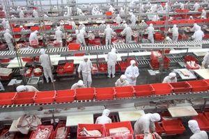 Một công nhân thiệt mạng vì ngã vào máy xay thịt