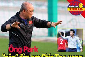 Ông Park 'cân' đàn em Shin Tae-yong; Thái Lan hướng đến 2026