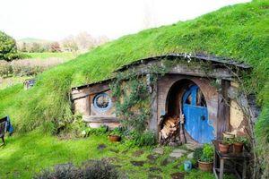 Ghé thăm xứ sở thần tiên của người lùn ở New Zealand