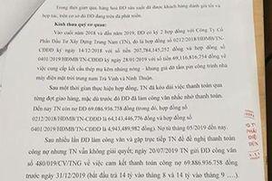Tập đoàn Trung Nam bị kiện ra tòa vì nợ đối tác hơn 69 tỷ đồng