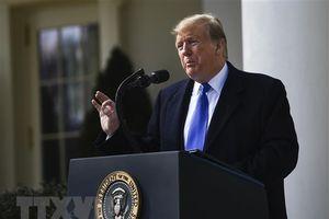Morgan Stanley dự báo khả năng tái đắc cử của ông Trump