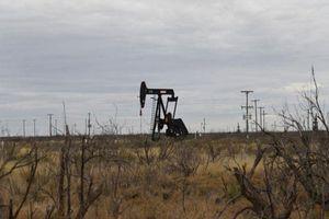 Giá dầu giảm về 65 USD/thùng khi căng thẳng tại Trung Đông hạ nhiệt