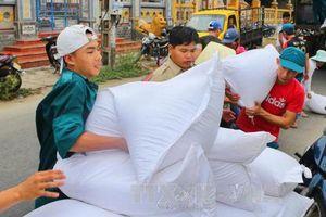 Hỗ trợ gạo cho tỉnh Nghệ An