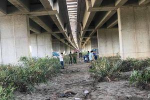 Đi chăn bò, phát hiện thi thể phụ nữ dưới gầm cầu cao tốc