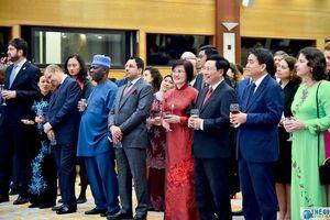 Toàn cảnh Phó Thủ tướng Phạm Bình Minh chúc Tết Ngoại giao đoàn năm 2020