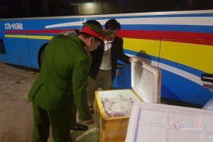 Khách lạ gửi 6 tạ tiểu hổ hôi thối từ Nam ra Bắc làm đặc sản