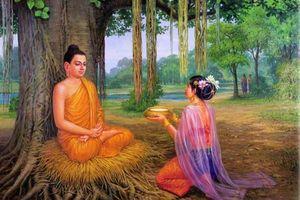 Phật dạy: 3 loại nghiệp chướng phụ nữ nhất định phải buông bỏ, bằng không sẽ cô quả đến cuối đời