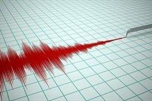 Nhật Bản phát hiện 'động đất chậm' ở Thái Bình Dương