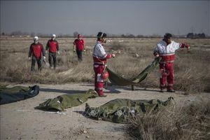 Tehran kêu gọi không chính trị hóa vấn đề vụ máy bay bị bắn nhầm