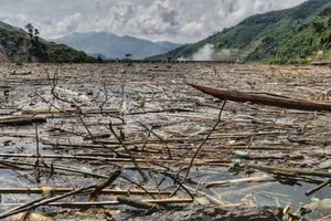 Nghệ An: Nước thượng nguồn sông Lam có mùi lạ nghi do ô nhiễm lòng hồ Thủy điện