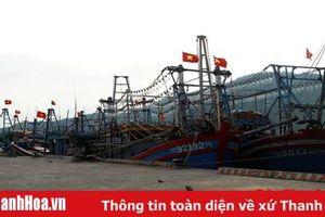 Tăng cường đầu tư kết cấu hạ tầng nghề cá