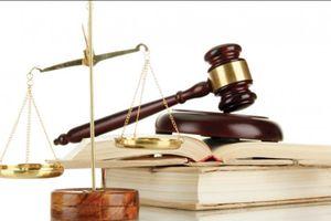 Tập trung theo dõi tình hình thi hành pháp luật trên địa bàn thành phố Hà Nội năm 2020