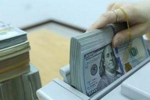 Đồng USD lên giá ngày cận tết, lãi suất qua đêm giảm sâu kỷ lục