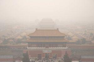 Xe con trong Tử Cấm Thành gây phẫn nộ ở Trung Quốc