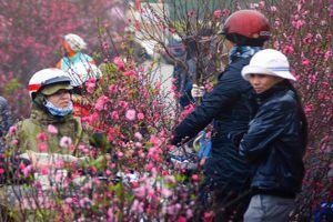 Thời tiết 18/1: Lai Châu, Điện Biên và Sơn La rét đậm dưới 12 độ
