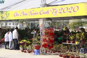 Rực rỡ hội chợ hoa Xuân Canh Tý 2020 trên phố núi Sơn La