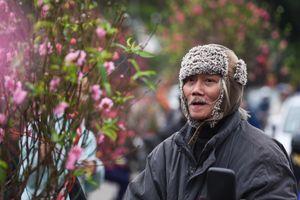 Người Hà Nội sắm Tết trong thời tiết 16 độ C