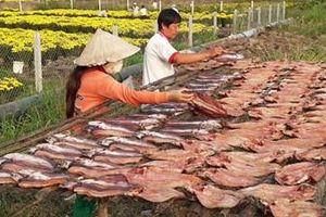 Xóm khô cá lóc xứ sở 'gạo trắng nước trong' tất bật vào Xuân