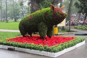 Độc đáo 12 con giáp bằng cây hoa nghệ thuật trong công viên Thống Nhất