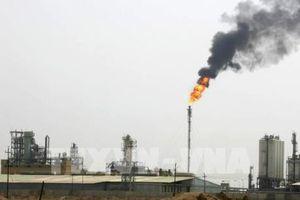 Các công ty dầu khí dành chưa đến 1% đầu tư vào năng lượng 'xanh'